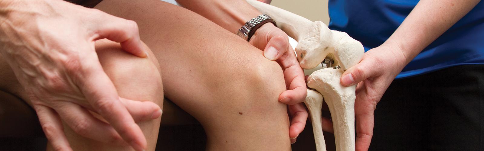 Πρωτόκολλα Φυσικοθεραπευτικής Αποκατάστασης Ασθενών | Καλλιστώ Care